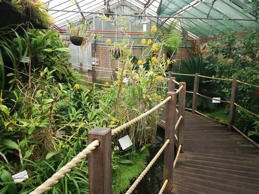 Manor Heath Park And Jungle Experience